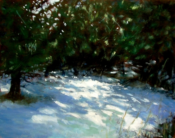 "Pines in Winter, oil/panel, 8""x10"""