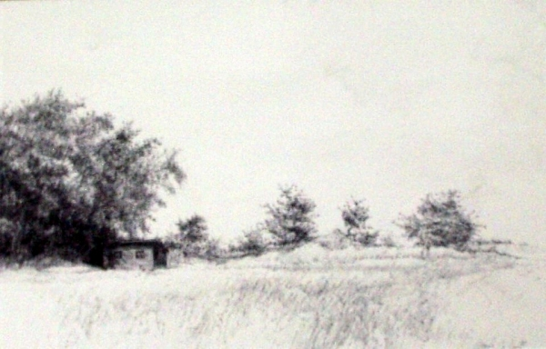 "Tokaido #3, ""Chicken House, Willows, Orchard"", ballpoint pen, 12""x18"""