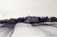 "Tokaido#5, ""Fall Plowing, Darling Road"", ballpoint pen, 12""x18"""