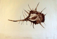"Spiny Critter, intaglio, 18""x 24"""