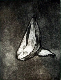 "Bolshoi Banana, aquatint, 12""x9"""