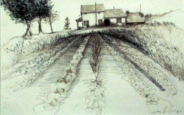 "Missing Tokaido #1, ""First Farm, First Garden"", ballpoint pen, 12""x18"""
