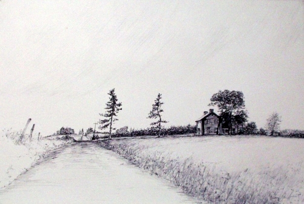 "Tokaido#15, ""Russell Ike's Farm Looking West"", ball point pen, 12""x18"""